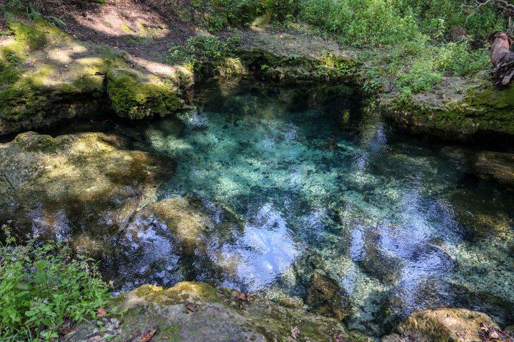 florida, spring, state park