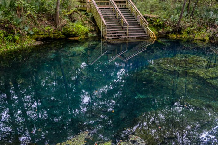 florida, springs, state park