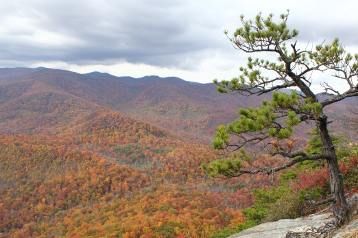 Try as I might, my photographs do not do justice to the astounding view from Looking Glass Rock of the fall colors.