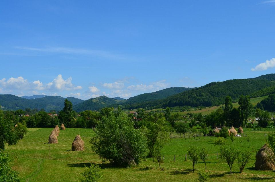 Romania, landscape, travel, explore, nature