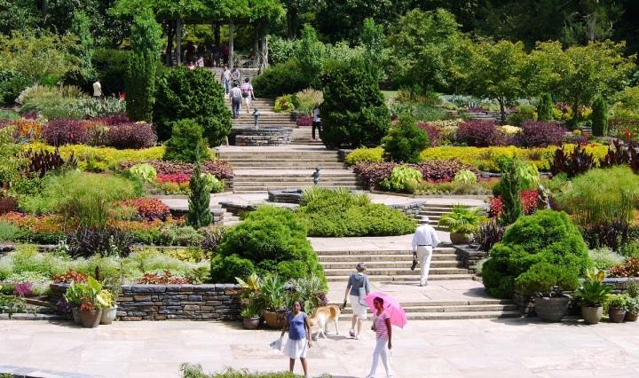 duke gardens, gardens, botanical, north carolina, usa, durham, duke