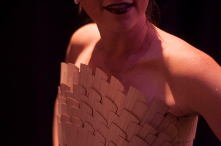 fashion show, boston, iida, ryan collier