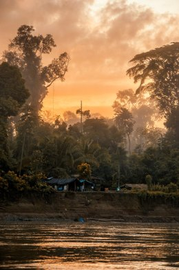 Wout Salenbien: This picture of a banana farmer's house reflects several dreams coming together. As a photographer, or an enthusiast, you always hear about the golden hour. However, if you aren't the morning type (like me) you miss out on those moments where the light is magical. This time I was awake, fueled by coffee and hot chocolate, and boating the Manu River in Peru during a NSF field trip this past summer. The other dream is exactly that, waking up in the rainforest and seeing all its beauty (before the sandflies attack you). Talking about this experience only gets you that far. Being lucky enough to capture the beauty that you see, that is another thing.
