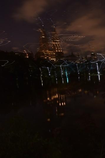 new york city, new york, rat, photography