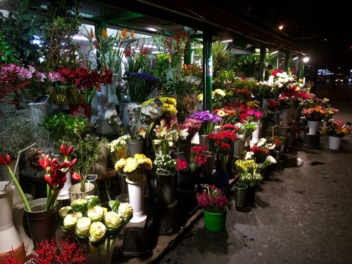 paris, flowers, travel, france