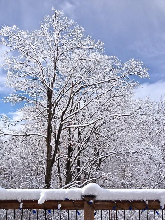 nature, ice, winter, canada