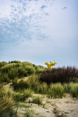 Wout Salenbien: Part of a year-round art project on the Belgian coast, this statue rises up from the dunes, only a few miles away from WWII fortifications. Representing the foam of the sea, the sculpture doesn't look anywhere near the real deal, but it has its own draw. Leading up to the top of the dunes, the small trail brings you to a sight were you can compare artistic interpretation with the real sea in the background. In my opinion, the statue loses - nothing beats a restless sea. Where the statue does win, is in still frames. I had all the time in the world to carefully frame this shot.