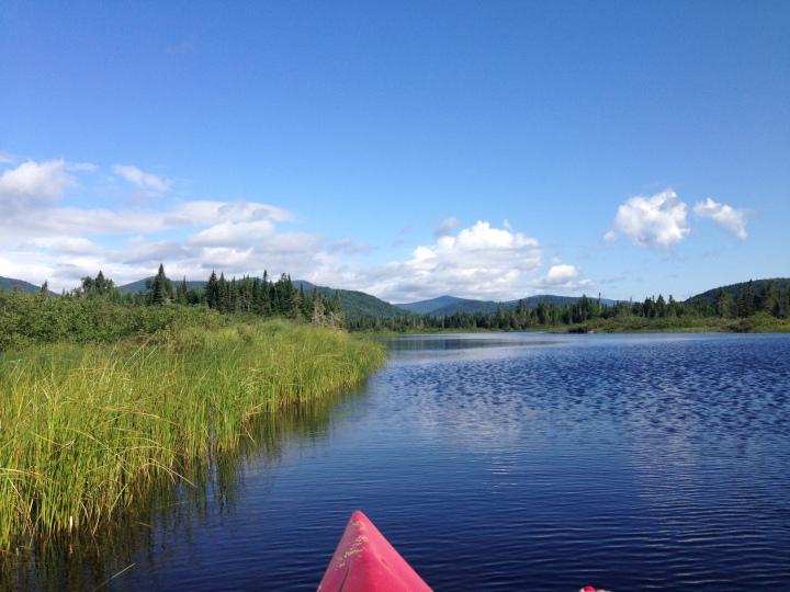 kayaking, maine, nature
