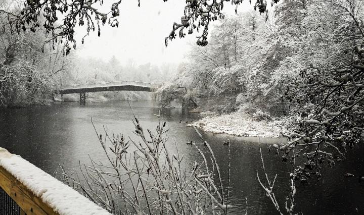 winter, bridge, blizzard