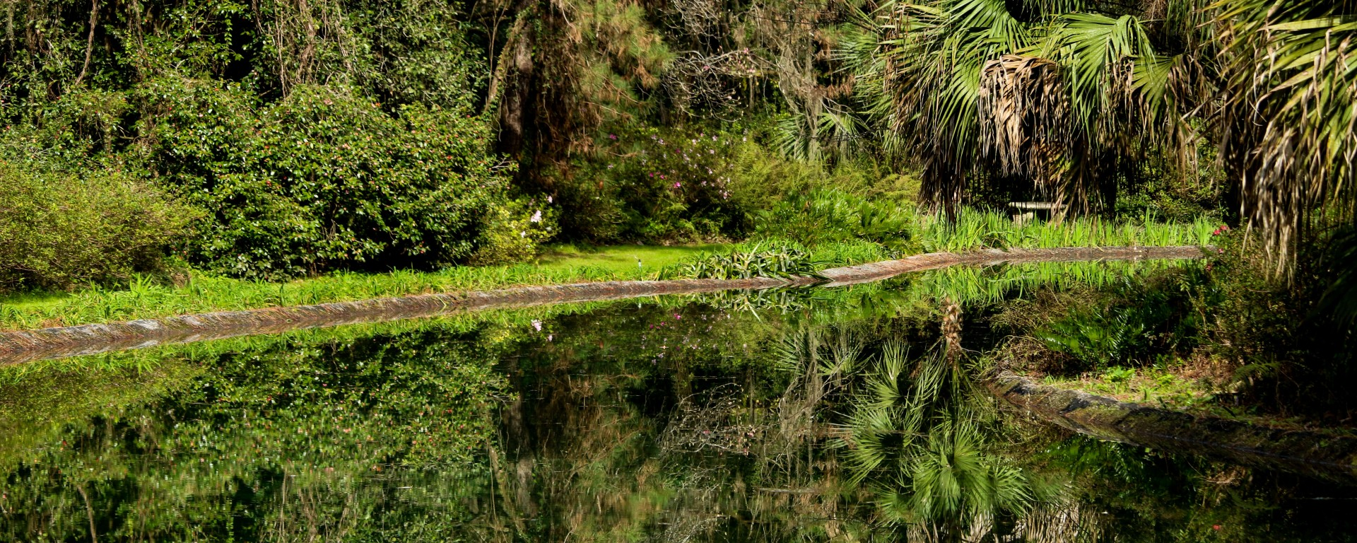 alfred maclay state parks, florida state park, florida, nature