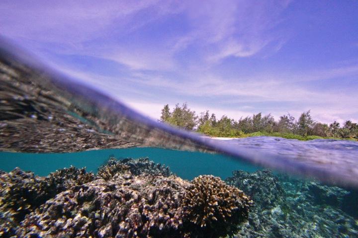 nature, island, coral