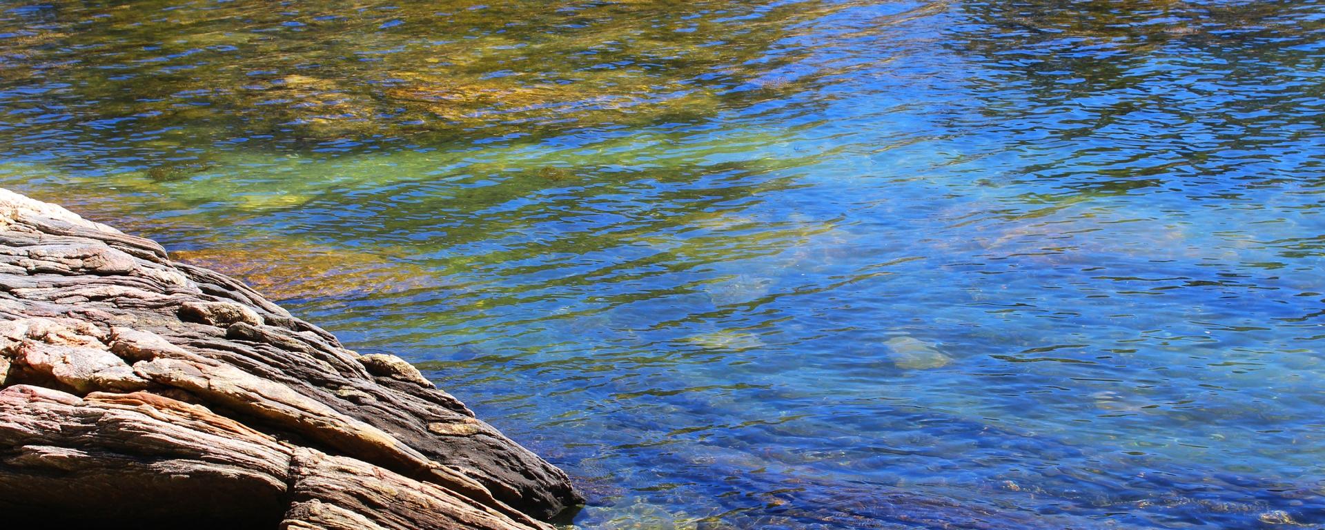maine, water, nature, trail