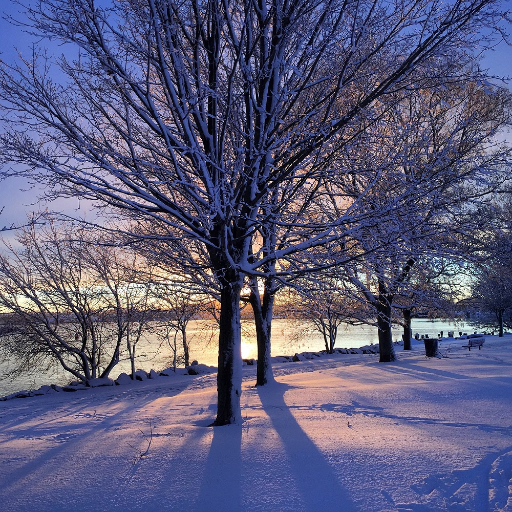 nature, winter, rhode island, snow