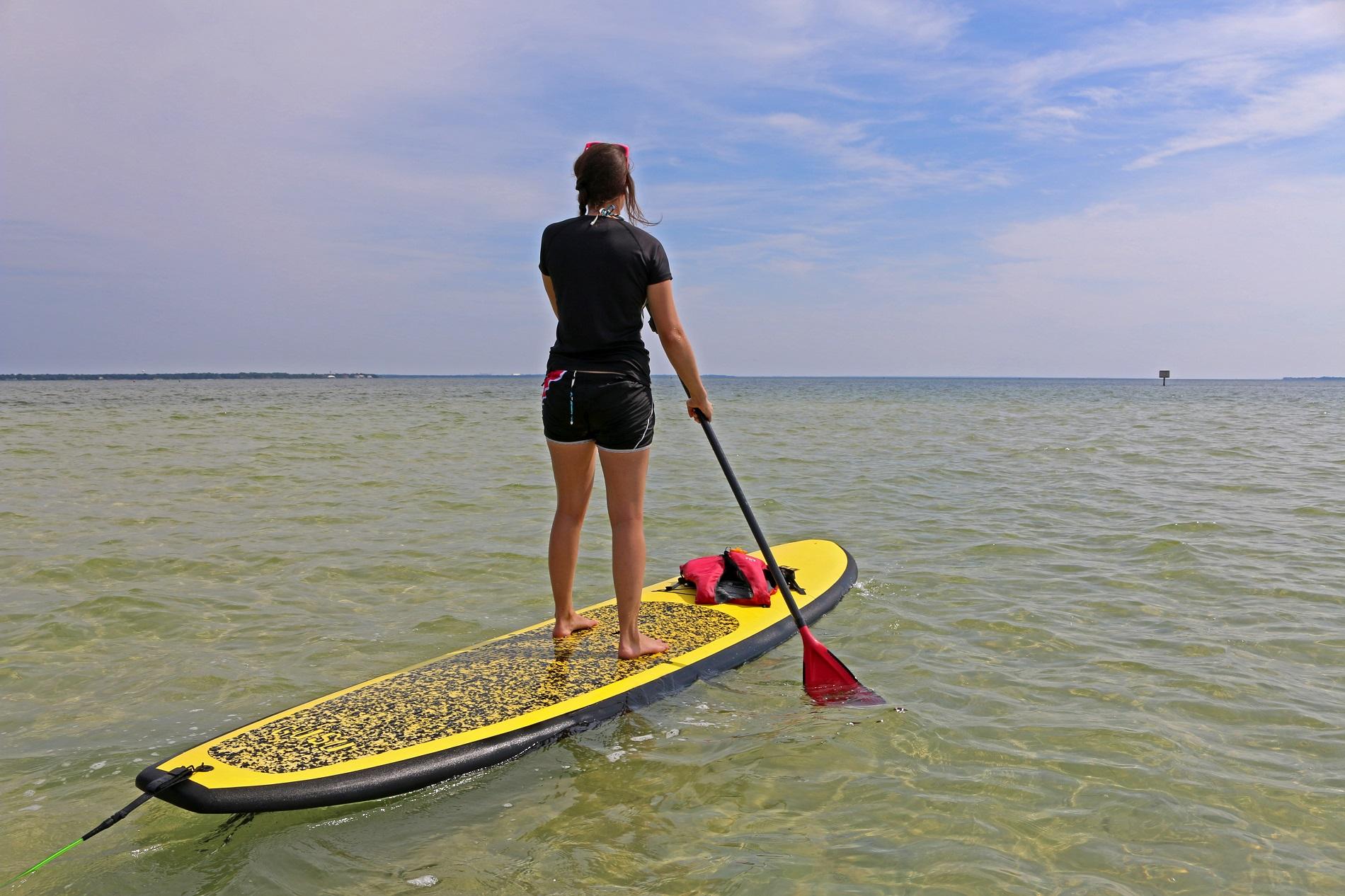 paddleboard, ecotourism, florida