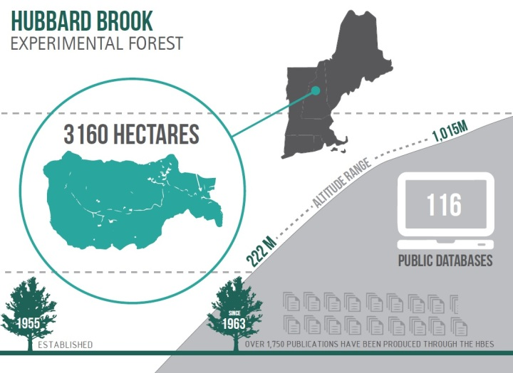 hubbard brook, LTER, research, science, infographic