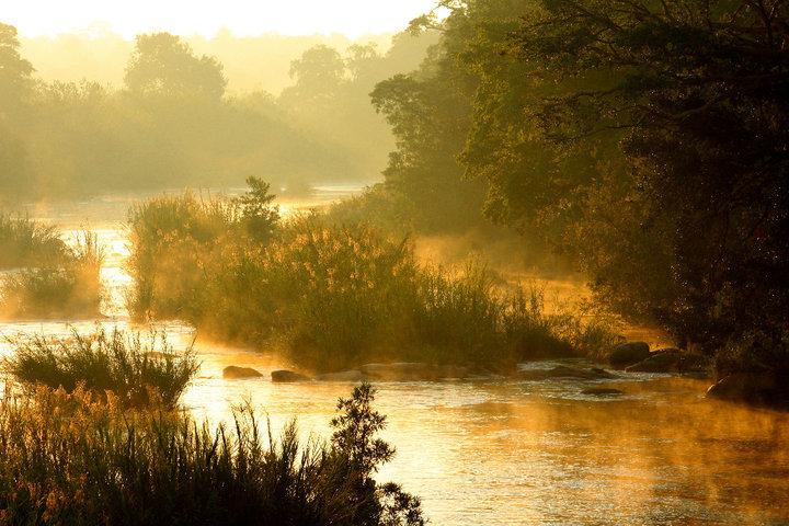 kruger, nature, landscape, africa