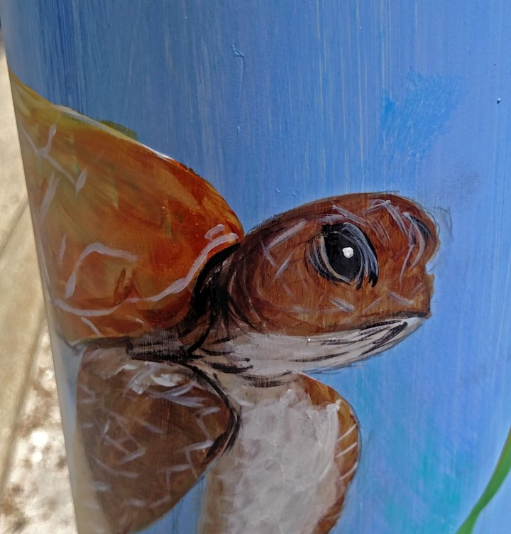 sea turtle, nature, landscape