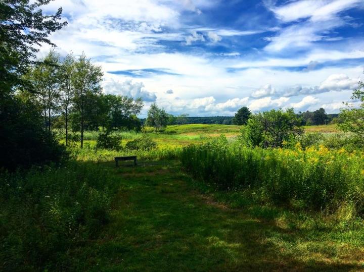 maine audubon, nature, landscape, maine