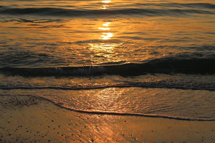 sunset, florida, nature
