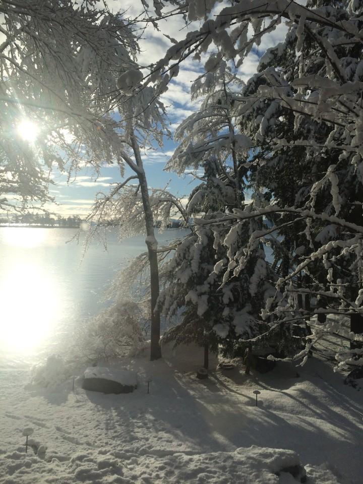winter, nature, travel