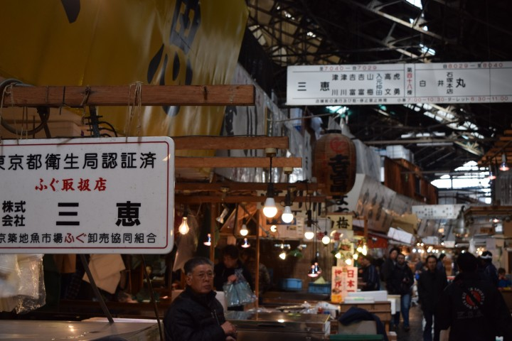 japan, fish market, travel