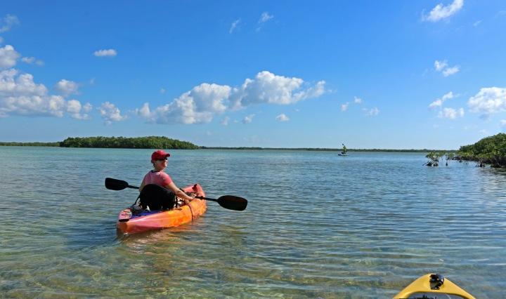kayak, nature, landscape, florida