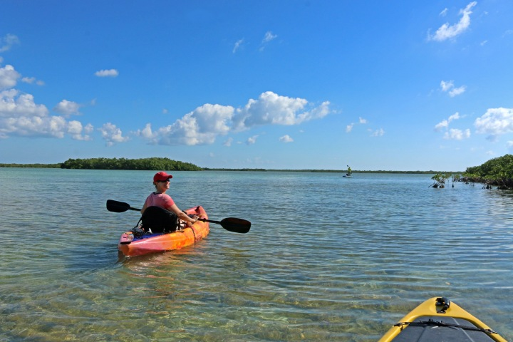 kayak, nature, landscape, florida