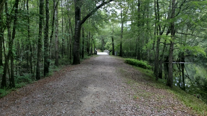 moores creek, nature, landscape, travel, national park